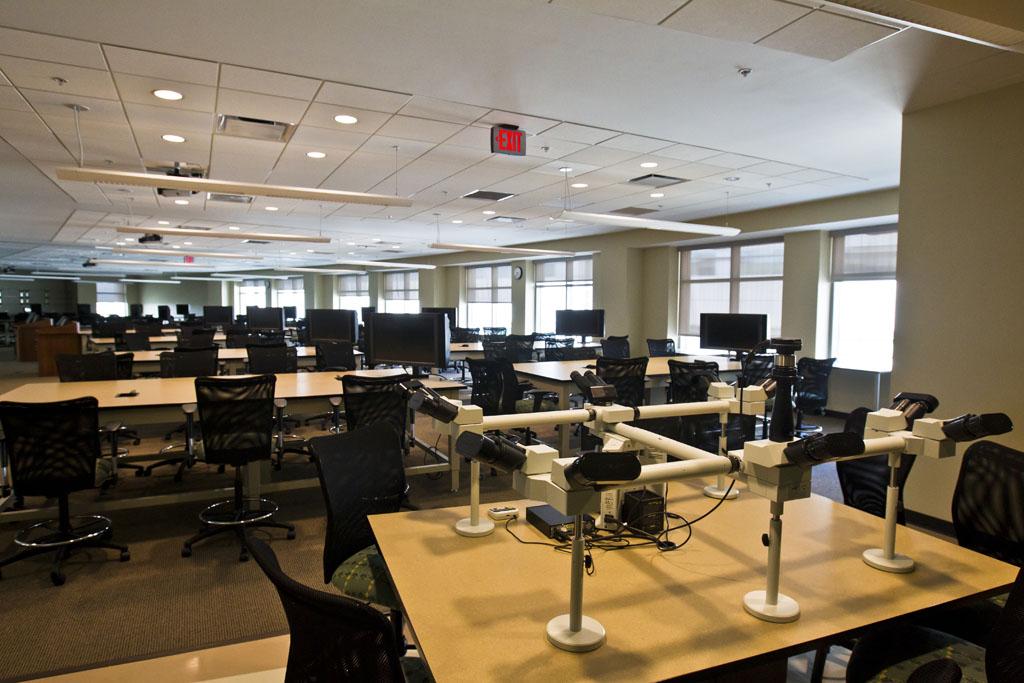 college of medicine microscopy lab rh med ucf edu UCF School UCF Certificate Programs